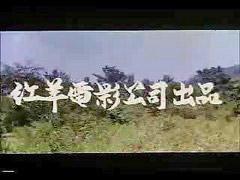 T台湾, 台b, 台湾t, 台妺, 台灣男, 台灣