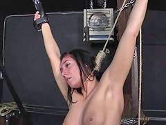 Slave, Punish, Punished, Punishement, Öother, Ref