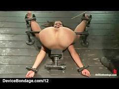 Caning, Bound, Caned, Bounded, Bound and, Canings