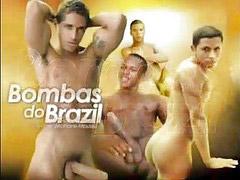 Brazil, Édos, Vıdos, Vıdo, Pés brazil, Doş