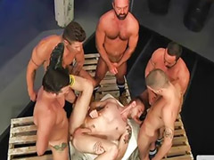 Orgy gay, Orgy group, Group orgy, Sex orgy, Orgy sex, Orgy group sex