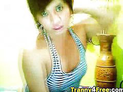 Tranny com, Traveco