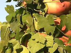Young young masturbation, Young milf, Pornstars milf, Pornstar stocking, Pornstar milfs, Stockings milf