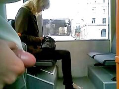 Bus, Exhib