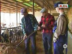 In farm, Farm,, Farm p o r n, Farm
