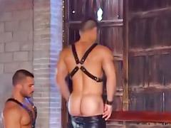 Cuero, Corridas anales gay, Musculoso gay, Musculoso, Musculosas, Musculosa