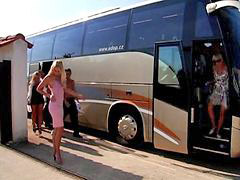 Bus, Party, Sex party, Bus party, Bus sex, Ultimate