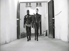 Latex, Dominant, Dominating, N latex, Latexs, Latex,