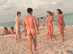 Beach, Orgy, Nude, Hotel