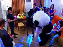 Teen party, Hot orgy, Teen group, Panda, Teen orgy, Teddy