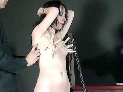 鞭 拷问, 拷问、, 拷打男, 折磨奶房, 皮鞭抽打, 男酷刑