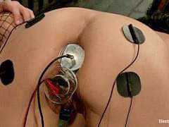 お仕置き, 罰, 止まる