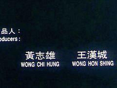 中国的, 中文