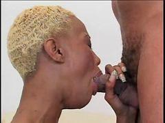 Blonds black, Blonde black, Blond&black, Blacks blonde, Black blonde, Black blond