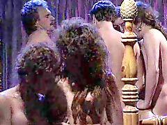 Orgy, Paris, ´porno, Çin porno, Victoria b, Tüp porno