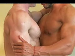 Muscle, Anal