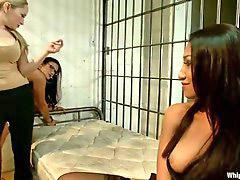 Lesbianas oficina, Lesbians prision, Prisioneros, Prision