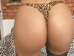 Morenas brasileiras, Brasileiro brasileiro, Brasileiros, Brasileiras, Transsexual, Brasileira