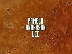 Wire, Pamela anderson, Pamela, Barb wire, Anderson, Wired