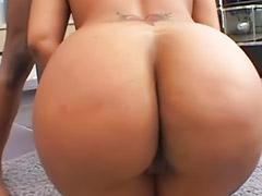 Gros culs grosse fesses