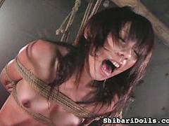 Collective sex, Doll sex, Shibari, Dolls sex, Clip sex, Long sex