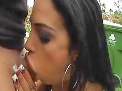 Valentine, Fever, Alen, Angelina v, Valentines, Angelina