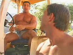 عضلات حار, رجل عضلات, عضلات