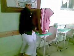 아랍, 아라비아 말