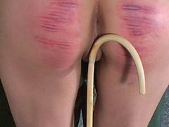 Caning, Caned, Canings, Caneing, F-m caning, Canes