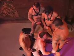 ควยใหญ่จ, ควยเกย์, เกย์ควย, เกย์ควยใหญ่, เกย์หมู่, ้เกย์ควยใหญ่
