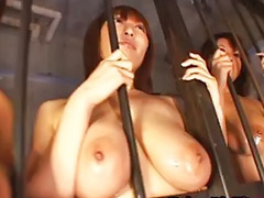 Japanese sex, Japanese big tits, Doll, Asian big tits, Japanese big tit, Asian gangbang